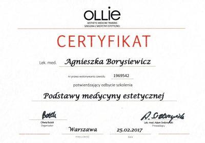 Certyfikat 2017.02.25 - Podstawy medycyny estetycznej