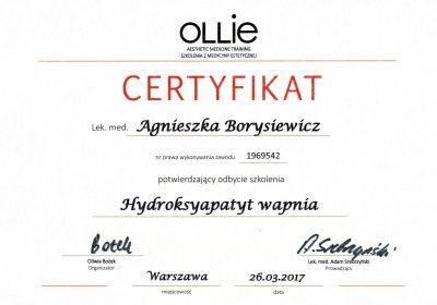 Certyfikat 2017.03.26 - Hydroksyapatyt wapnia