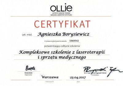 Certyfikat - 2017.04.23 - Kompleksowe szkolenie z laseroterapii i sprzętu medycznego