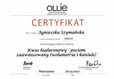 Certyfikat 2017.03.26 - Kwas hialuronowy poziom zaawansowany