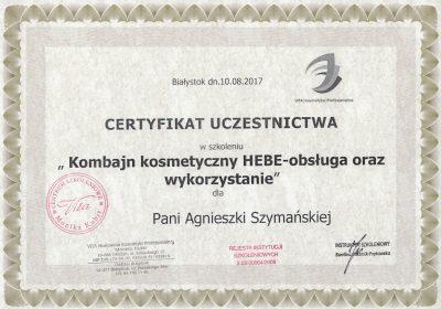 Certyfikat 2017.08.10 - Hebe